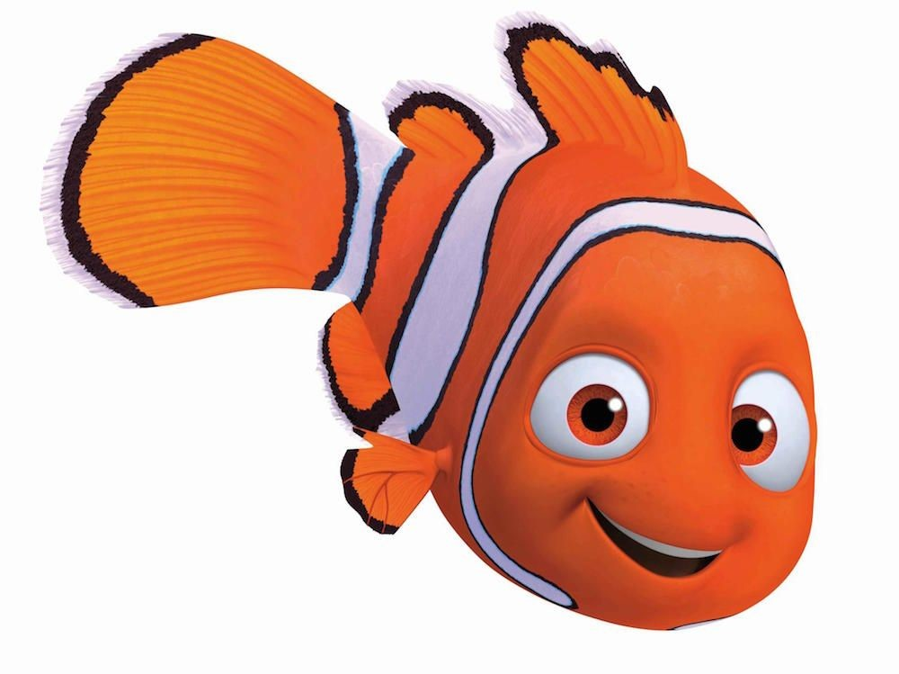 Quiz: Which Finding Nemo Character Are You? | Finding nemo ...